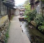 20060506_004kawa640